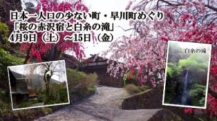日本一人口の少ない町・早川町めぐりプラン「桜の赤沢宿と白糸の