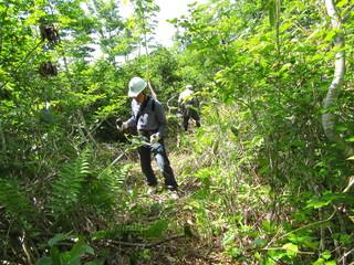 そばの里 森林の楽校2017夏・水無【草花が美しい湿原周辺】