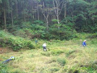トキの島 森林の楽校2017夏(環境学実習)