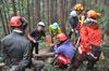 チェーンソーによる安全な伐木技術・技能 研修会・審査会開催!