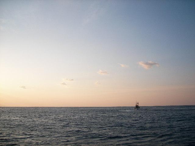 漁業就業希望者向け研修in神津島 & 事前説明会