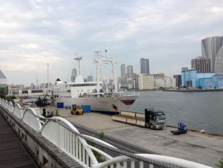 東京湾の水産業発展に貢献する「竹芝ゴミ拾い3・23」