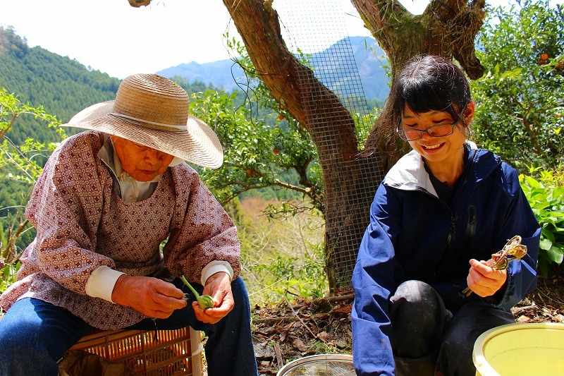 1年間の農山村ボランティア「緑のふるさと協力隊」参加者募集中