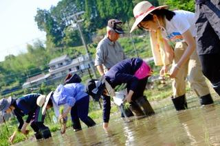 5月23~24日(土・日) 熊野の棚田 田畑の楽校2020