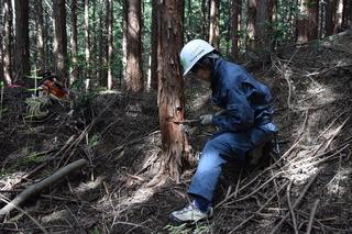 第3期「森林ボランティア青年リーダー養成講座 in四国」